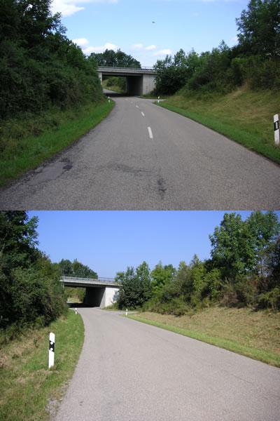 risssanierung asphalt straßen